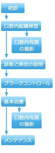 歯周病治療のプロセス(初期)