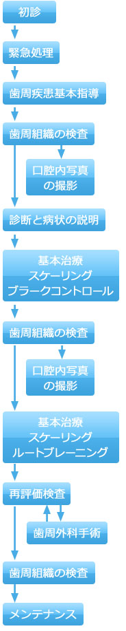 歯周病治療のプロセス(後期)